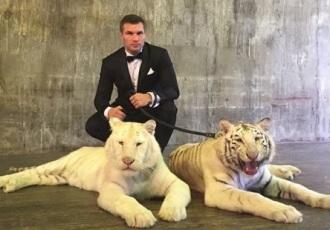 Кадр Дня: Дрозд з тиграми