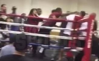 Масова бійка спалахнула між глядачами на турнірі боксерів-любителів (ВІДЕО)