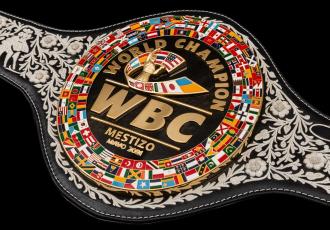 Всесвітня боксерська рада показала усім спеціальни...