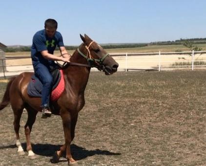 Умар Саламов осідлав коня (ВІДЕО)
