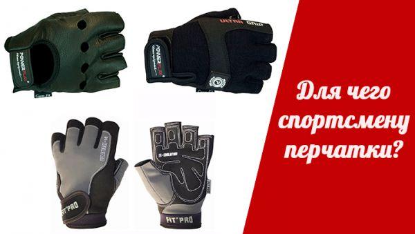 4615_dlya-chego-sportsmenu-perchatku-ywo.jpg (29.24 Kb)